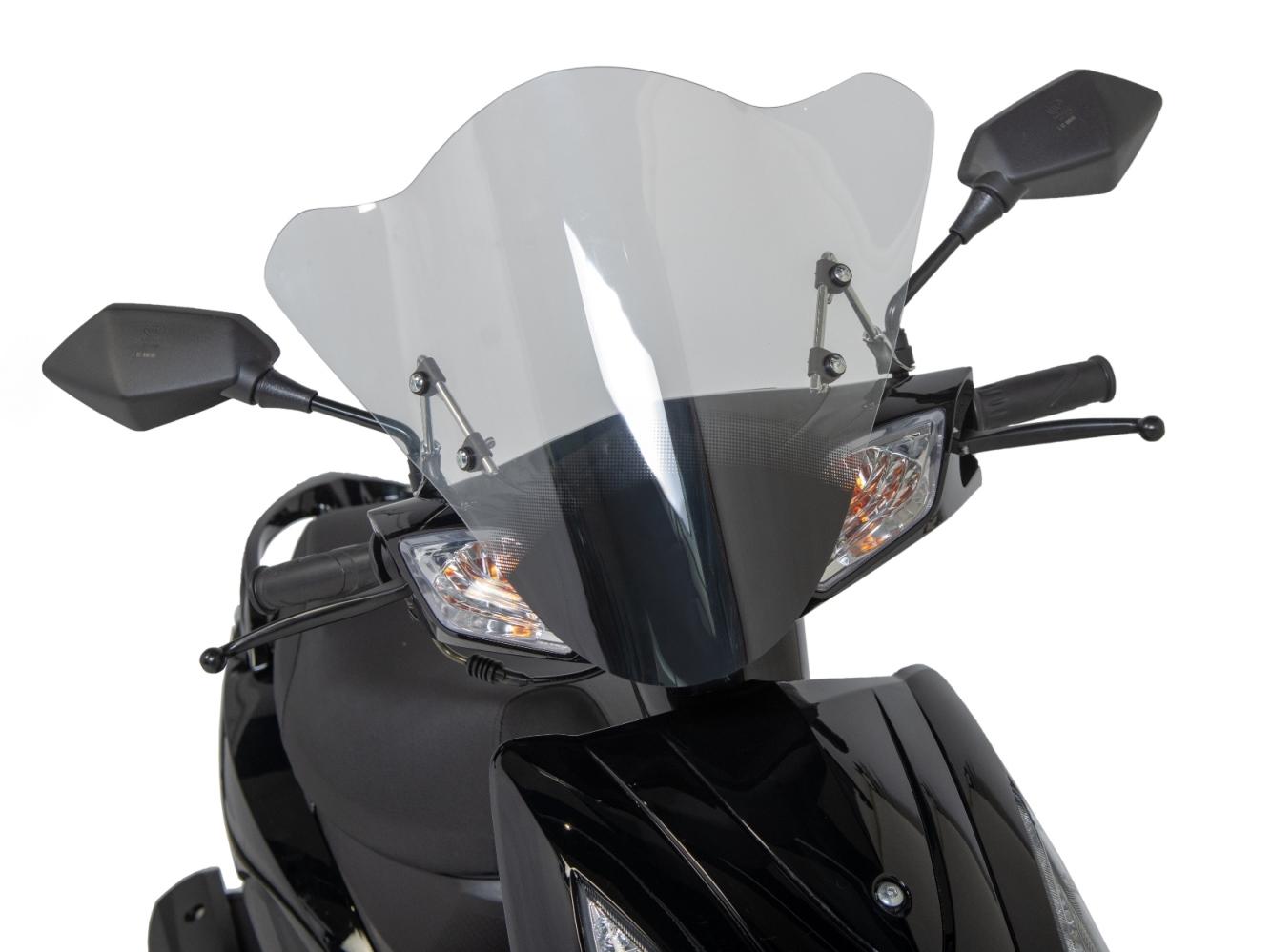 Windschild GT3
